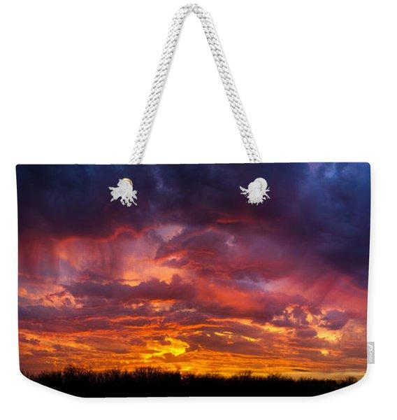 The Sentinel's Surprise Weekender Tote Bag
