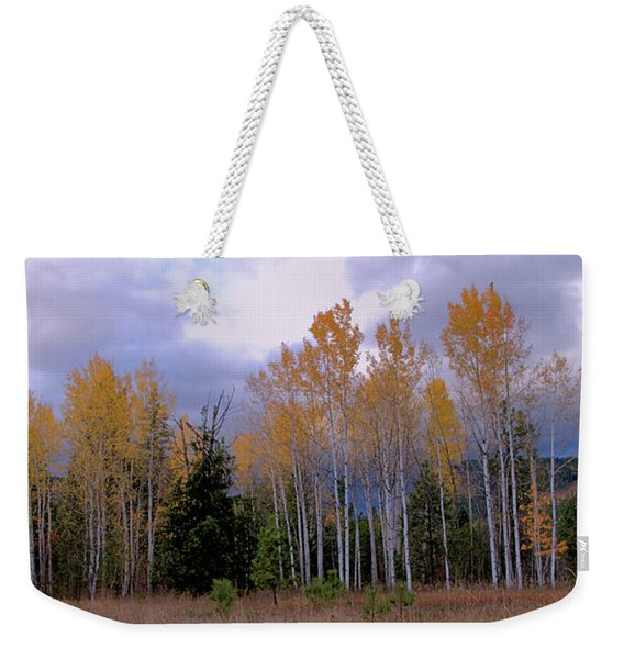 The  Song Of The Aspens 2 Weekender Tote Bag