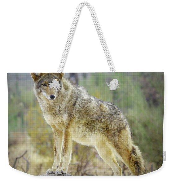The Stance Weekender Tote Bag