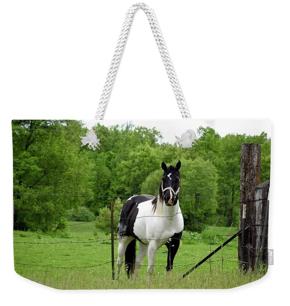 The Strong Horse Weekender Tote Bag