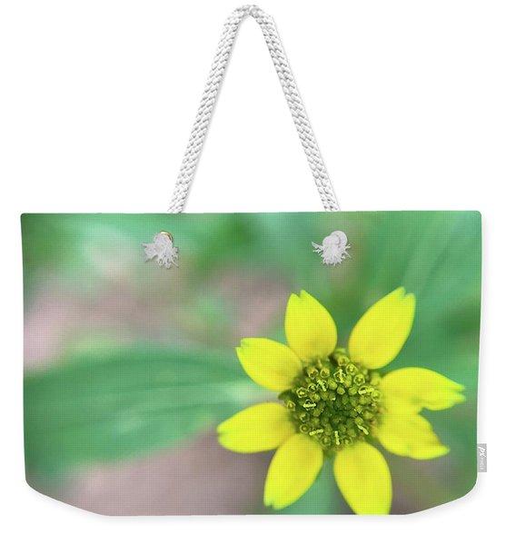 The Tiniest Joys Weekender Tote Bag