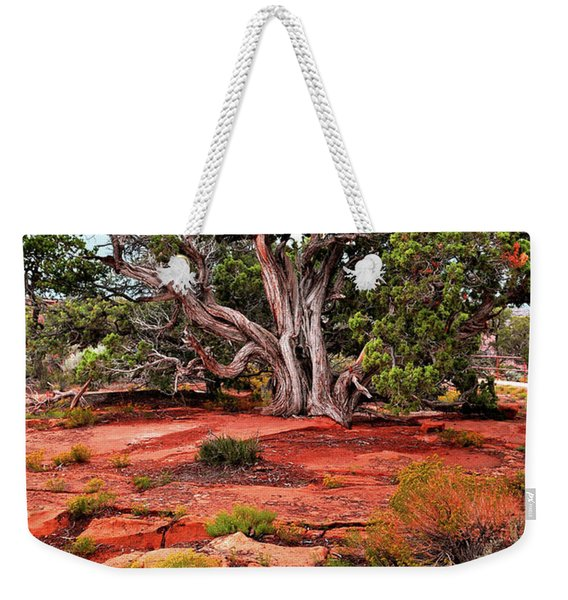 The Tree That Knows All Weekender Tote Bag