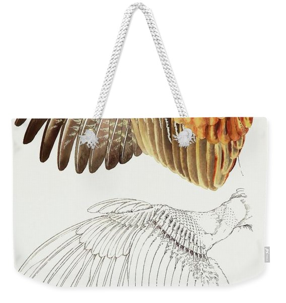 The Upper Side Of The Pheasant Wing Weekender Tote Bag