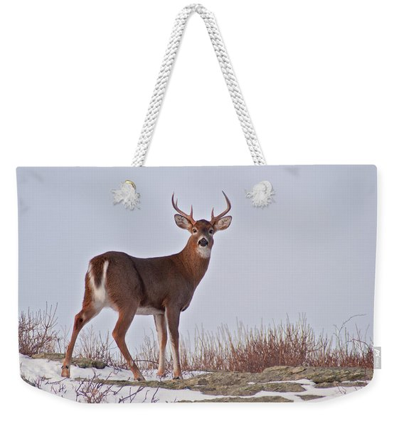 Weekender Tote Bag featuring the photograph The Watchful Deer by Nancy De Flon