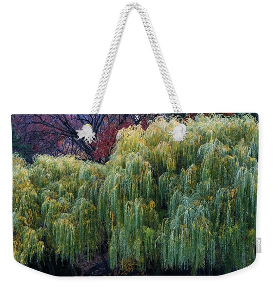 Weekender Tote Bag featuring the photograph The Willows Of Central Park by Lorraine Devon Wilke