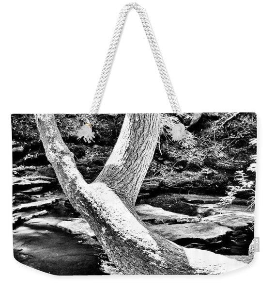 The Wishbone Tree Bw Weekender Tote Bag
