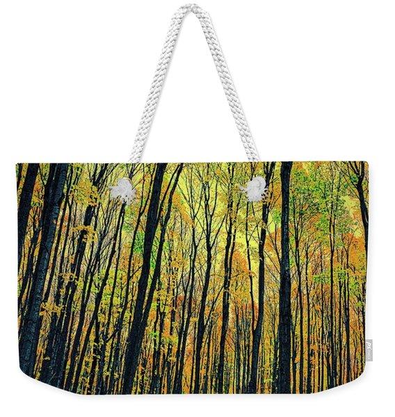 The Woods In The North Weekender Tote Bag