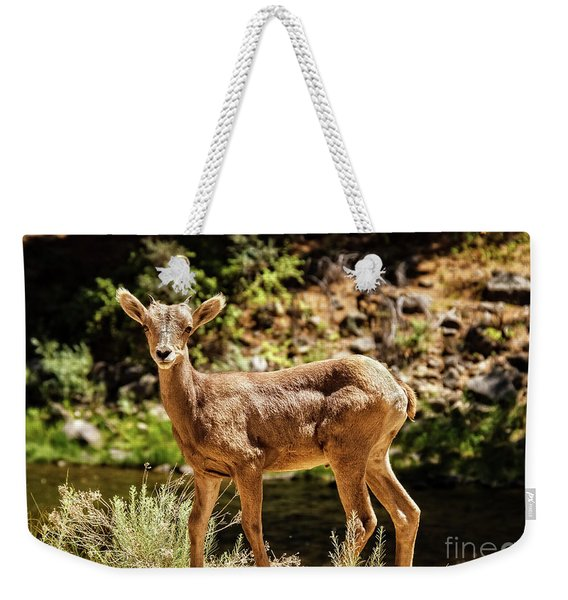 The Young One Weekender Tote Bag