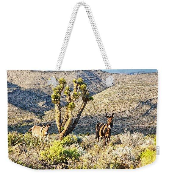 The Zebra Burro Weekender Tote Bag