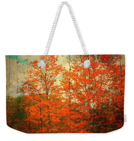 The Happiness Of Life By Taylor Coleridge Weekender Tote Bag