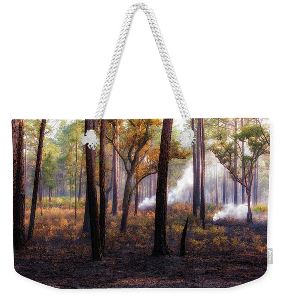 Thirds Weekender Tote Bag