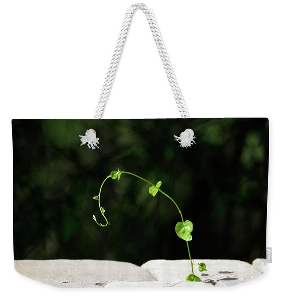 This Little Vine - Shining In The Sunlight Weekender Tote Bag