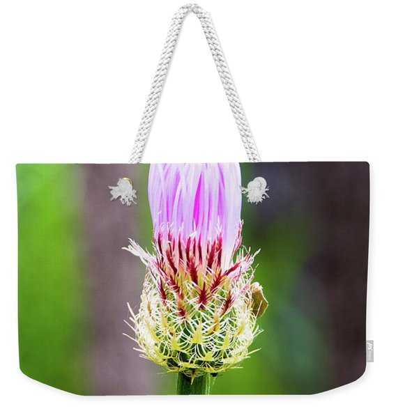 Thistle In The Canyon Weekender Tote Bag