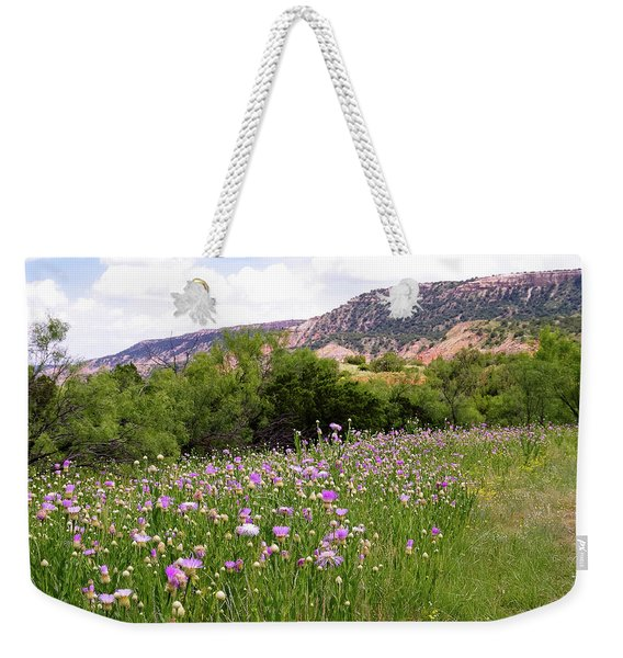 Thistles In The Canyon Weekender Tote Bag