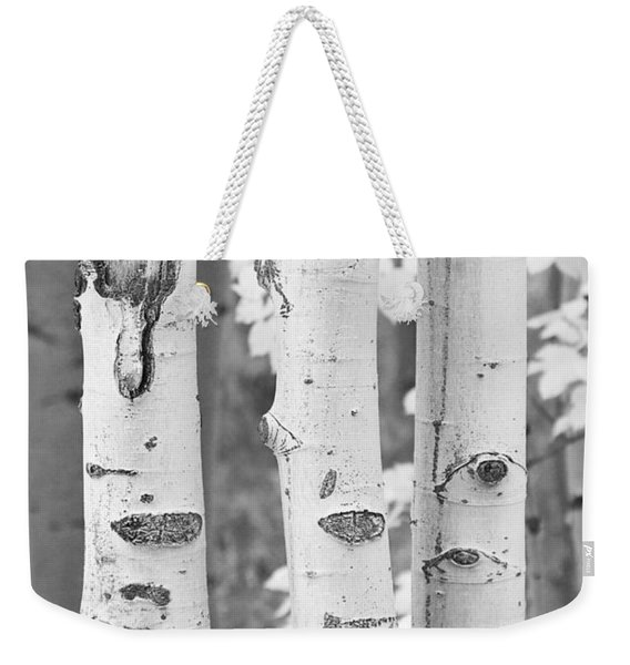 Three Aspens In Black And White  Weekender Tote Bag
