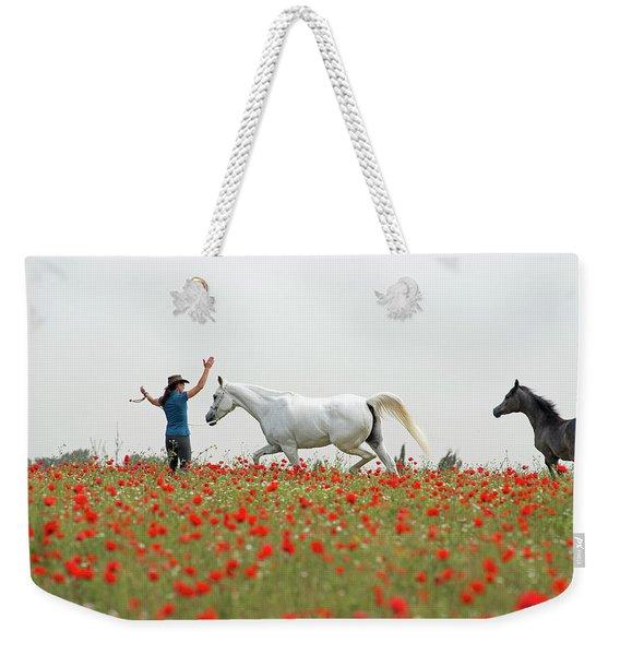 Three At The Poppies' Field Weekender Tote Bag