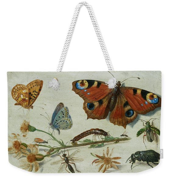 Three Butterflies, A Beetle And Other Insects Weekender Tote Bag