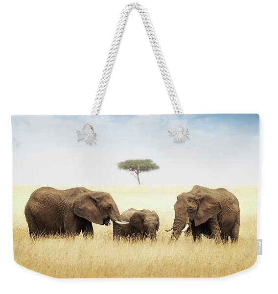 Three Elephant In Tall Grass In Africa Weekender Tote Bag