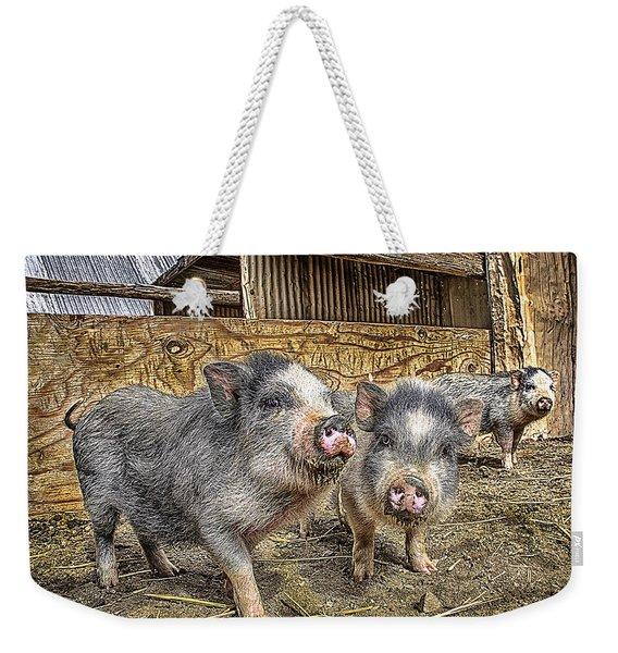 Three Little Piggies Weekender Tote Bag