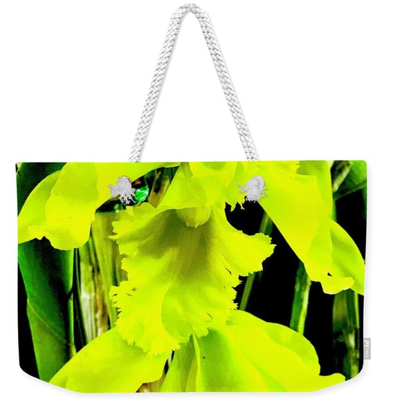 Three Orchids In Yellow Weekender Tote Bag
