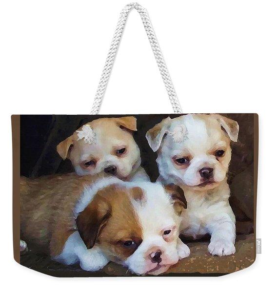 Three Sweeties Weekender Tote Bag