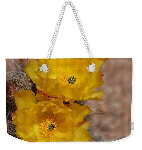 Three Yellow Cactus Flowers Weekender Tote Bag