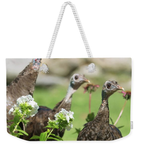 Threes A Crowd Weekender Tote Bag