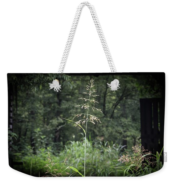 Through The Barn Weekender Tote Bag