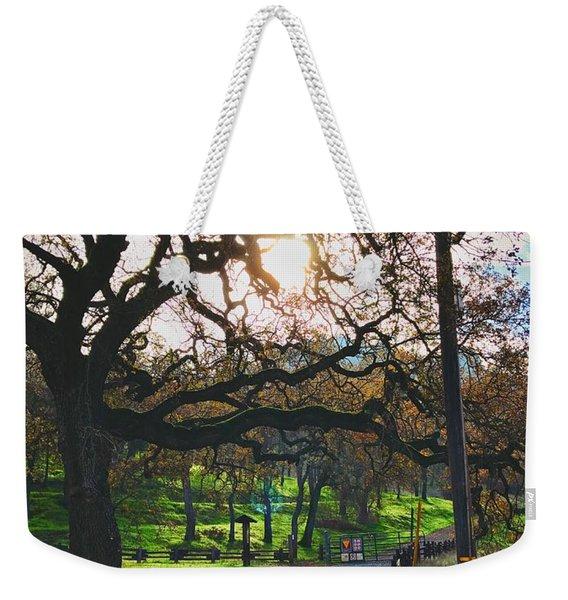 Through The Oaks Weekender Tote Bag