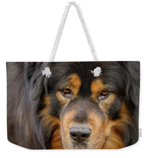 Tibetan Herding Dog Portrait Weekender Tote Bag