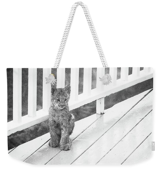 Weekender Tote Bag featuring the photograph Time Out Bw by Tim Newton
