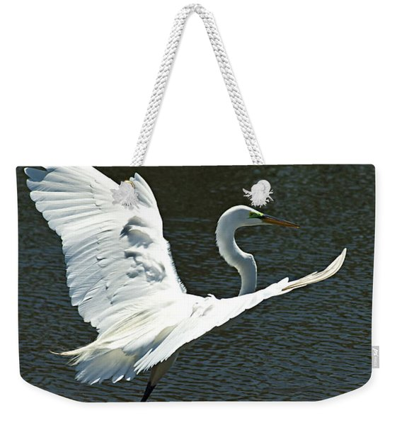 Weekender Tote Bag featuring the photograph Time To Land by Carolyn Marshall