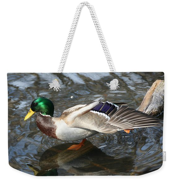 Weekender Tote Bag featuring the photograph Time To Stretch by William Selander