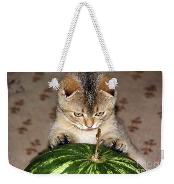 Timoshka Collection - 2 Weekender Tote Bag