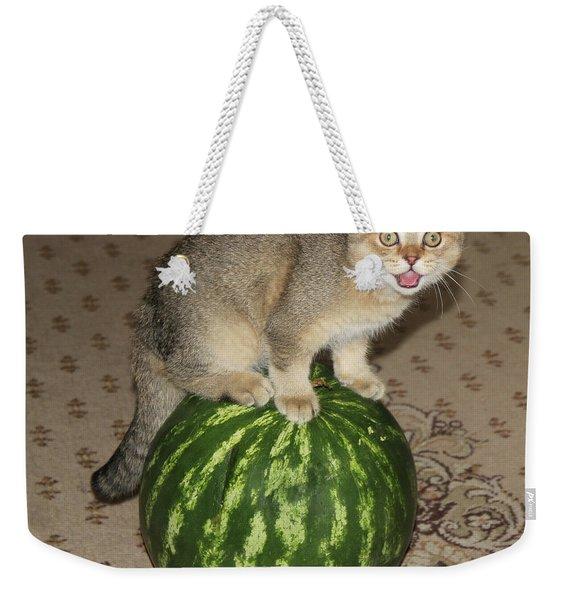Timoshka Collection - 3 Weekender Tote Bag