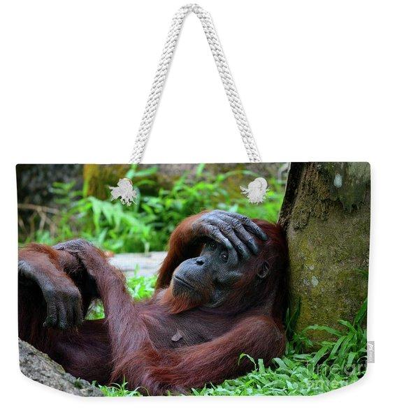 Tired Female Orangutan Ape Rests Against Tree With Hand On Her Head Weekender Tote Bag