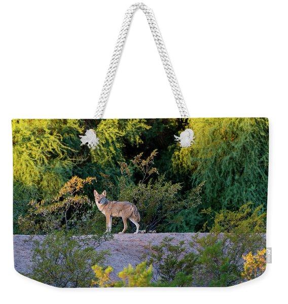 Today's Coyote Weekender Tote Bag