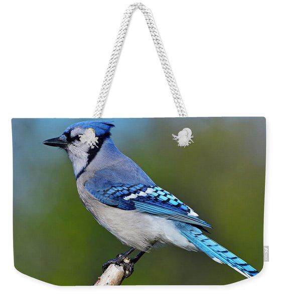 Too Blue Weekender Tote Bag