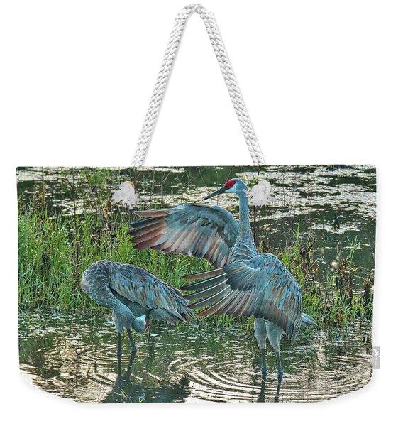 Topsy Turvy Sandhill Cranes Weekender Tote Bag