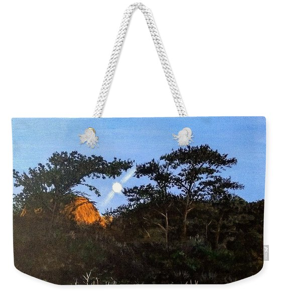 Weekender Tote Bag featuring the painting Torrey Pines In The Morning by Kevin Daly