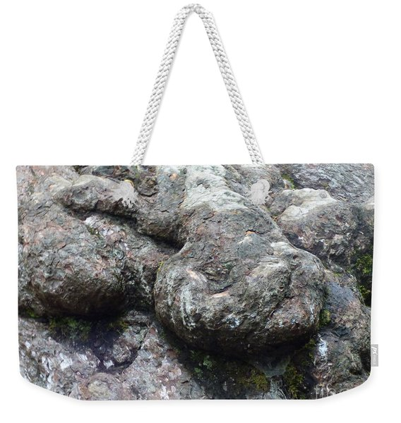 Tortoise In A Tree -2 Weekender Tote Bag