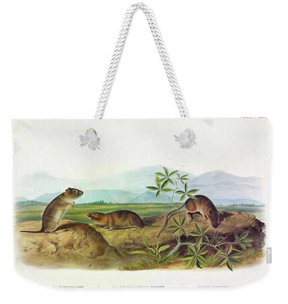 Townsend's Arvicola, Sharp-nosed Arvicola, Bank Rat Weekender Tote Bag