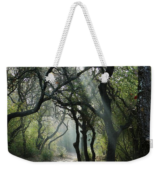 Weekender Tote Bag featuring the photograph Trail Of Light by Arik Baltinester