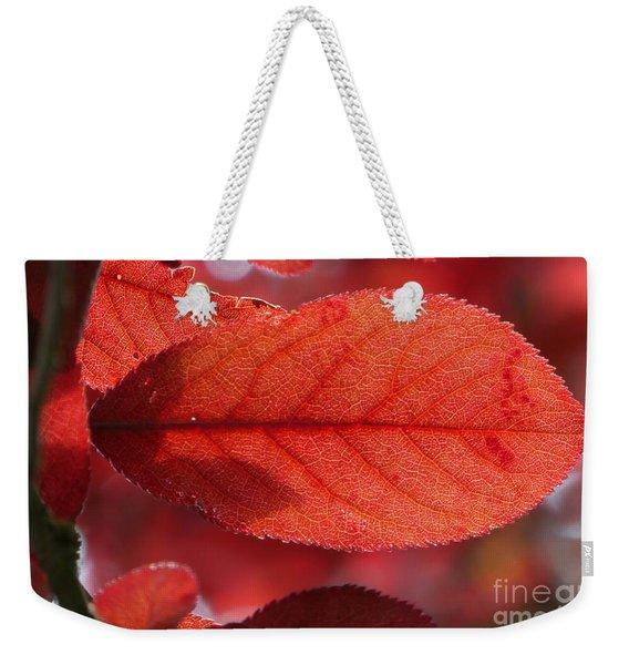 Transparence 23 Weekender Tote Bag