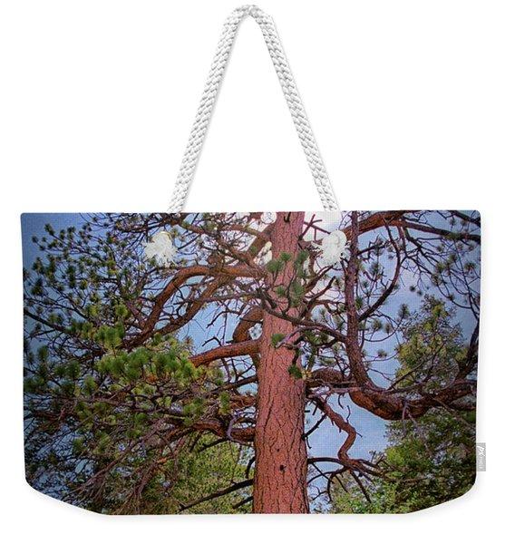 Tree Cali Weekender Tote Bag