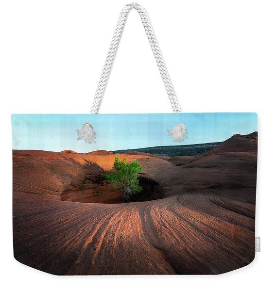 Tree In Desert Pothole Weekender Tote Bag