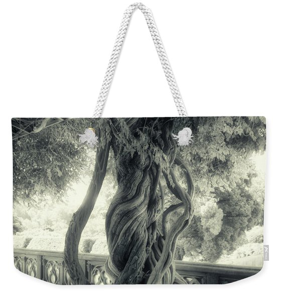 Tree Trunk Bw Series Y6693 Weekender Tote Bag