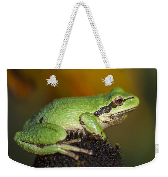 Treefrog On Rudbeckia Weekender Tote Bag