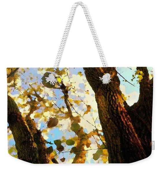 Treetop Abstract-look Up A Tree Weekender Tote Bag