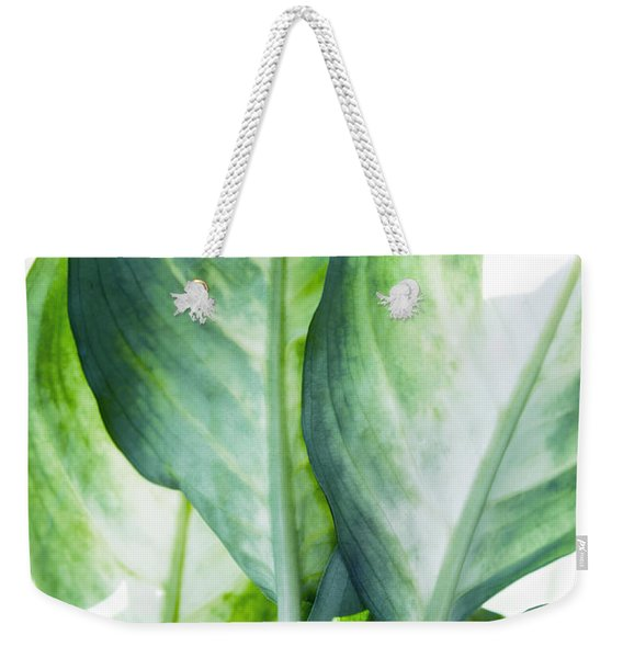 Tropic Abstract  Weekender Tote Bag